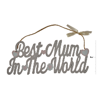 Best mum in the world' hanger