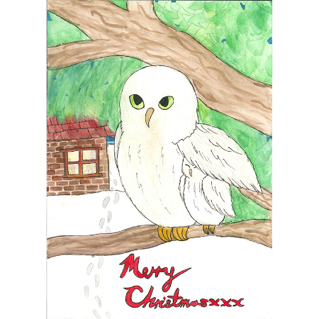 Snowy christmas - 10 cards